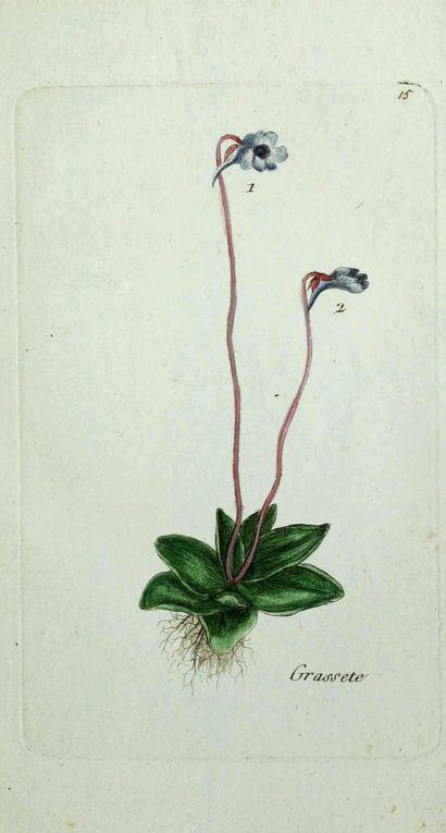 Album - gravures-fleurs-paris-2-