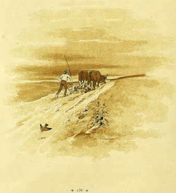 Aquarelles illustrations par Vimar des fables de Lachambaudie