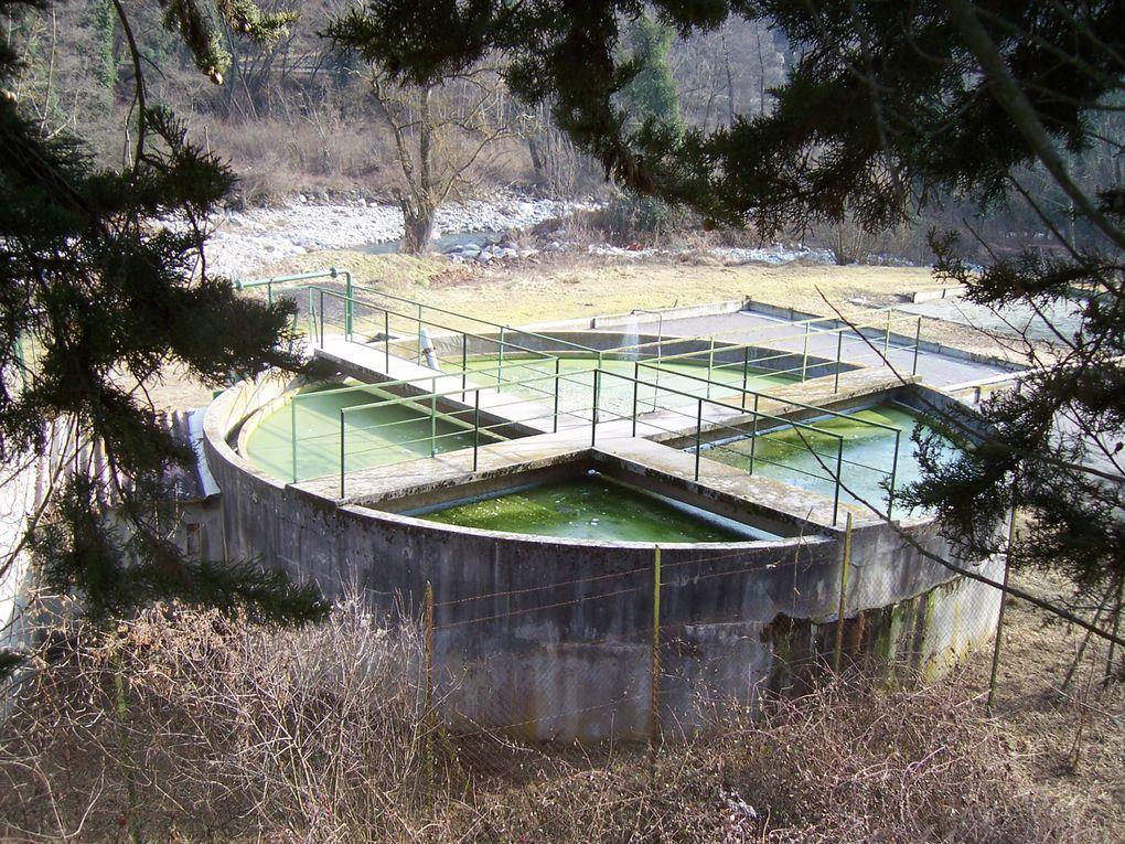 Photos personnelles sur l'environnement en général tirées de mon site sur l'éducation à l'environnement (environnement.ecoles.free.fr)