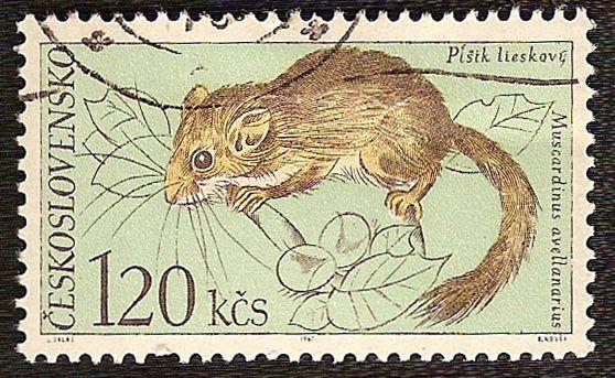 Timbres du monde sur la nature (animaux, fleurs, plantes divers...)