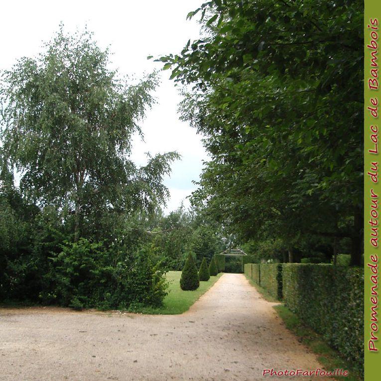 Album - Bambois Lac et Jardins en juillet