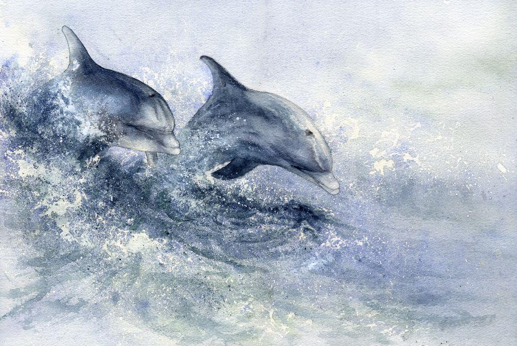 """Voici les 21 créations envoyées par des artistes de plus de 15 ans dans le cadre du concours """"Dessine moi un dauphin!"""""""