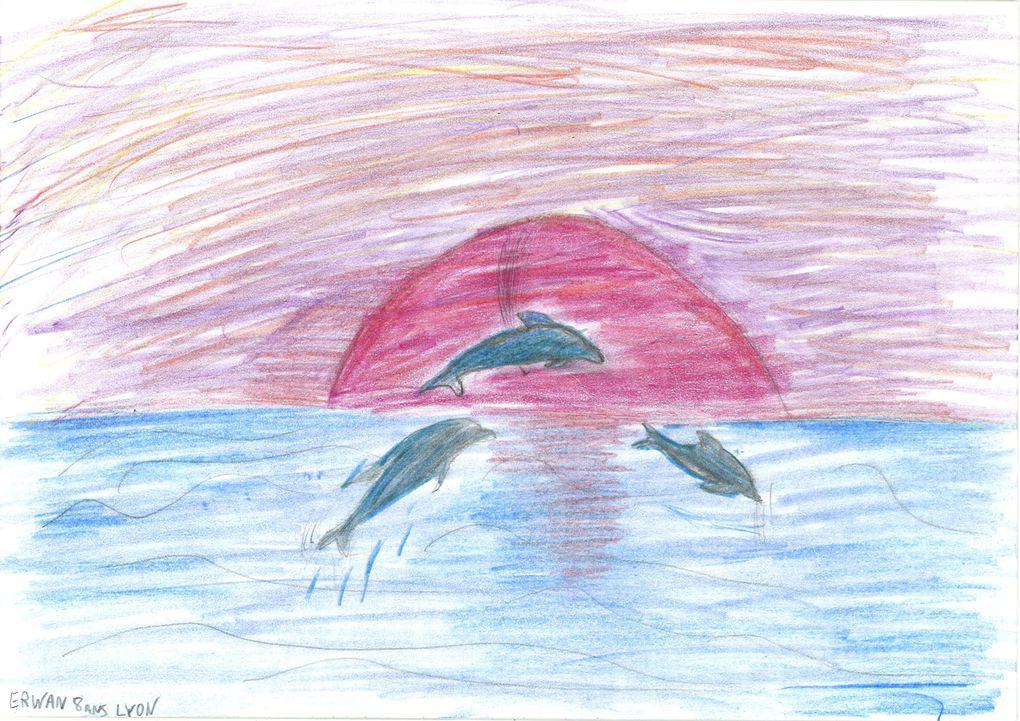 """Voici les 63 créations envoyées par des artistes de moins de 16 ans dans le cadre du concours """"Dessine moi un dauphin!"""""""