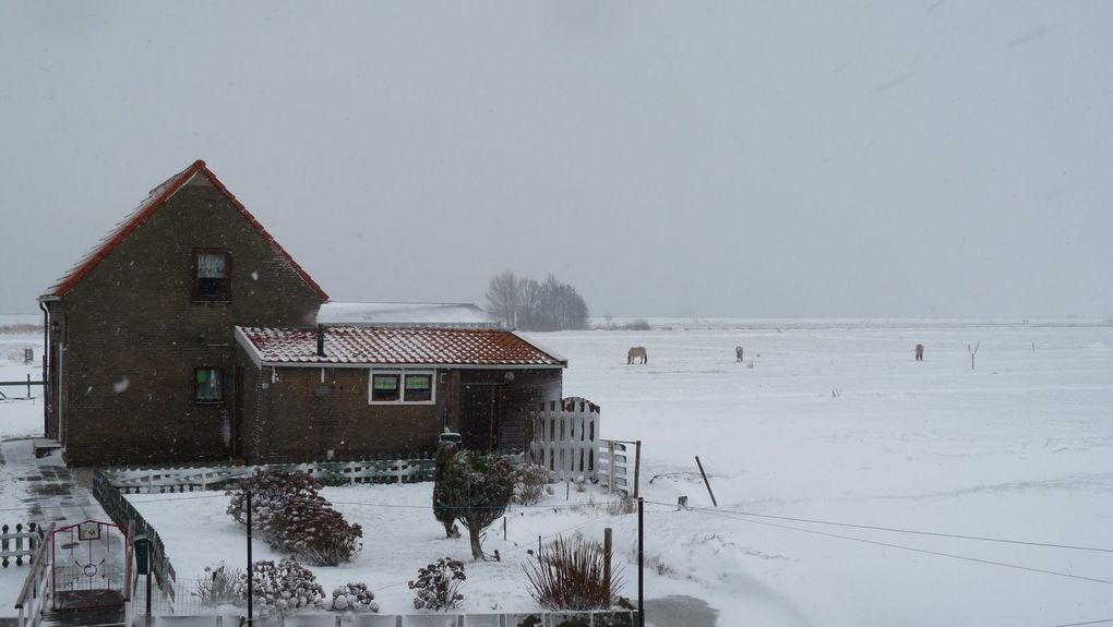 quelques jours à Noël sous la neige...