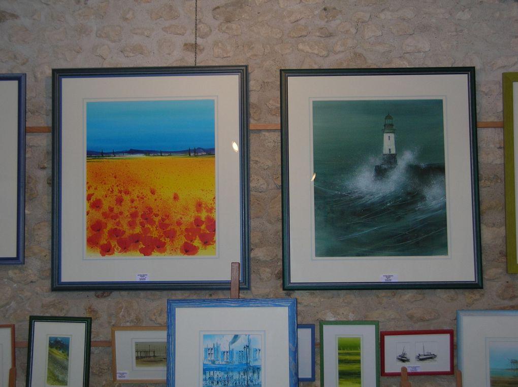 Photos de mon expo 2009