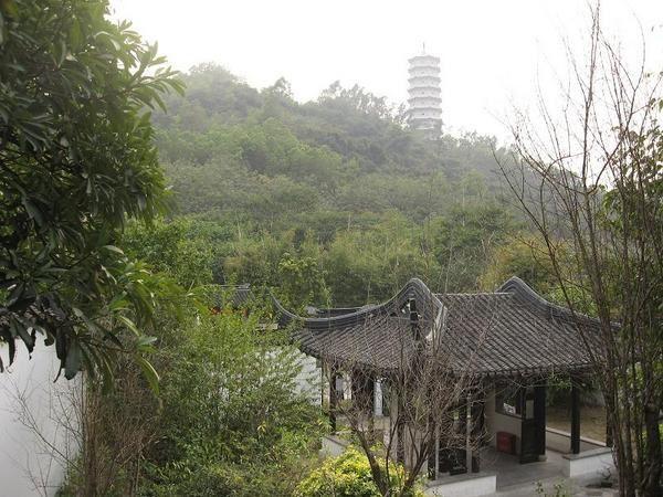 Album - Shenzhen