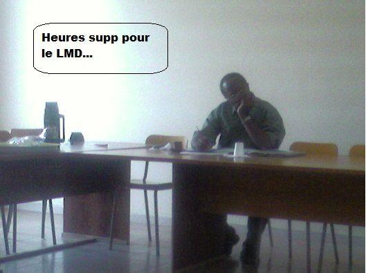 Album - insolites-lmd
