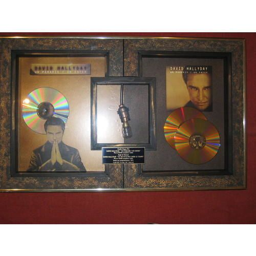 <p>David Hallyday, le chanteur, le pilote et l'homme d'exception</p>