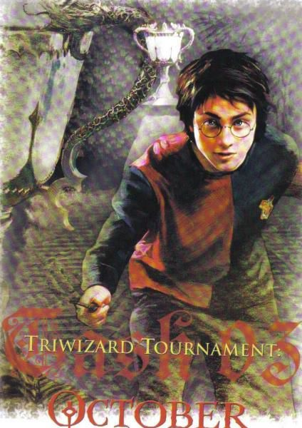 <strong>Harry Potter</strong>