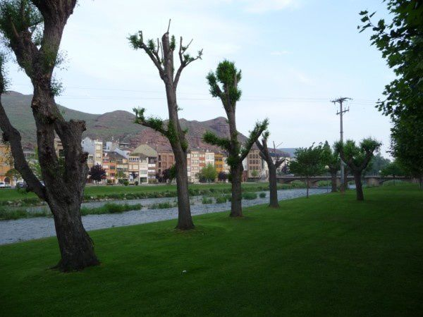 St-Jacques 2009-2.