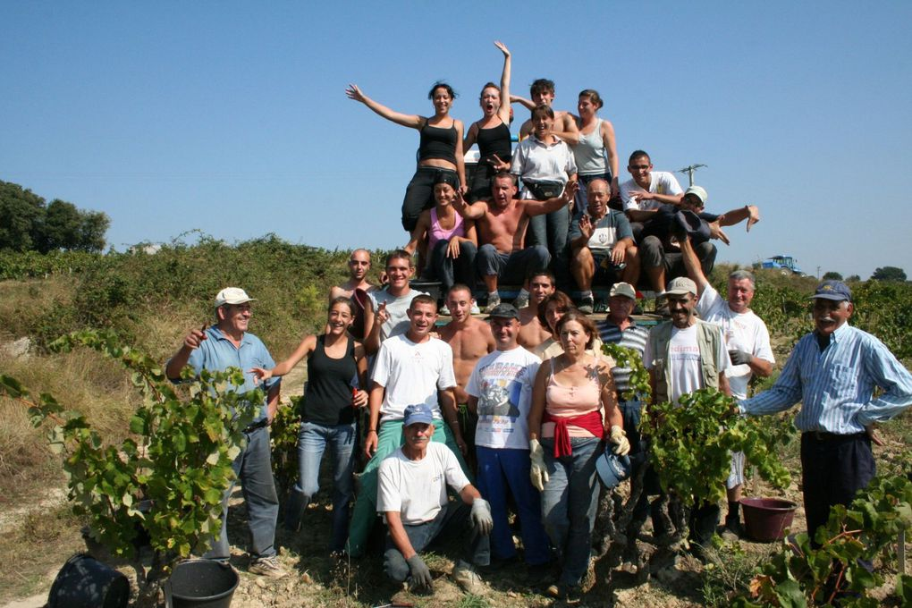Album - VENDANGES - 2009