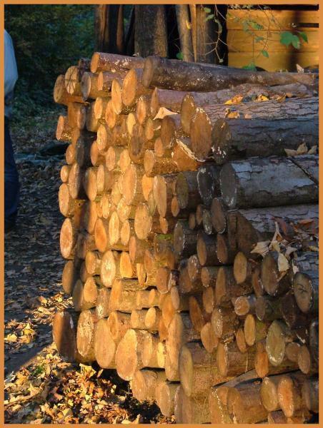 """<span style=""""font-style: italic&#x3B; font-weight: bold&#x3B;"""">Photos prisent un Dimanche d'automne &agrave&#x3B; l' Eco-mus&eacute&#x3B;e d'Alsace (68)</span>"""