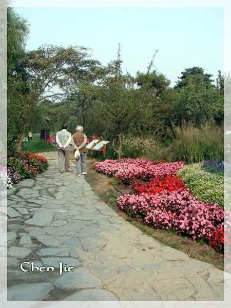 Voici quelques photos de la Faune et de la Flore chinoise.<br />En de nombreux points, vous les verrez semblables aux nôtres, mais en d'autres... <br />Je vous laisse profiter de cette escapade naturelle dans une Nature riche et prolifique, malheure