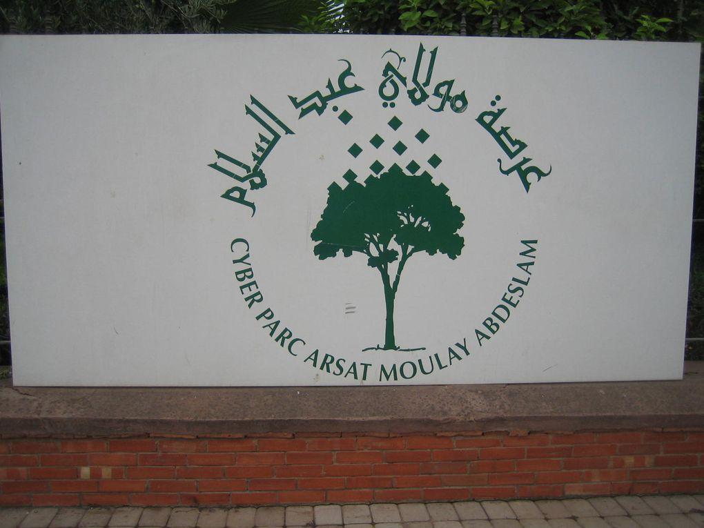 Album - Maroc 2011