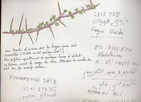 Album - Carnet d'Algérie de Monique ASSUNÇÂO-PETIT