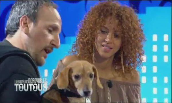Album - Saucisse chien people