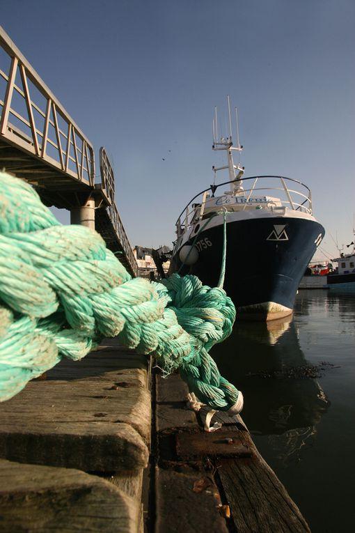 Ambiance Marine dans le port de La Turballe - Photos Thierry Weber Photographe de Mer - La Baule Guérande