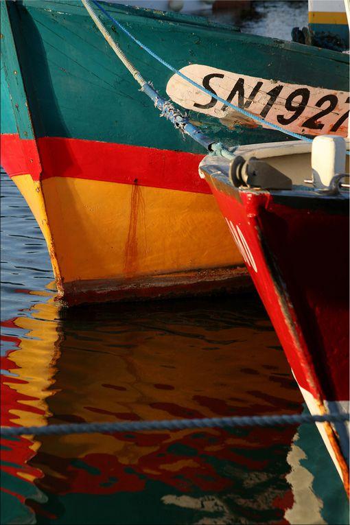 Album - Le Port de la Turballe