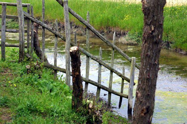Ecomusée du Marais Breton Vendéen - La Barre de Monts (85) - Le Daviaud<br />Entre eaux douces et eaux salées