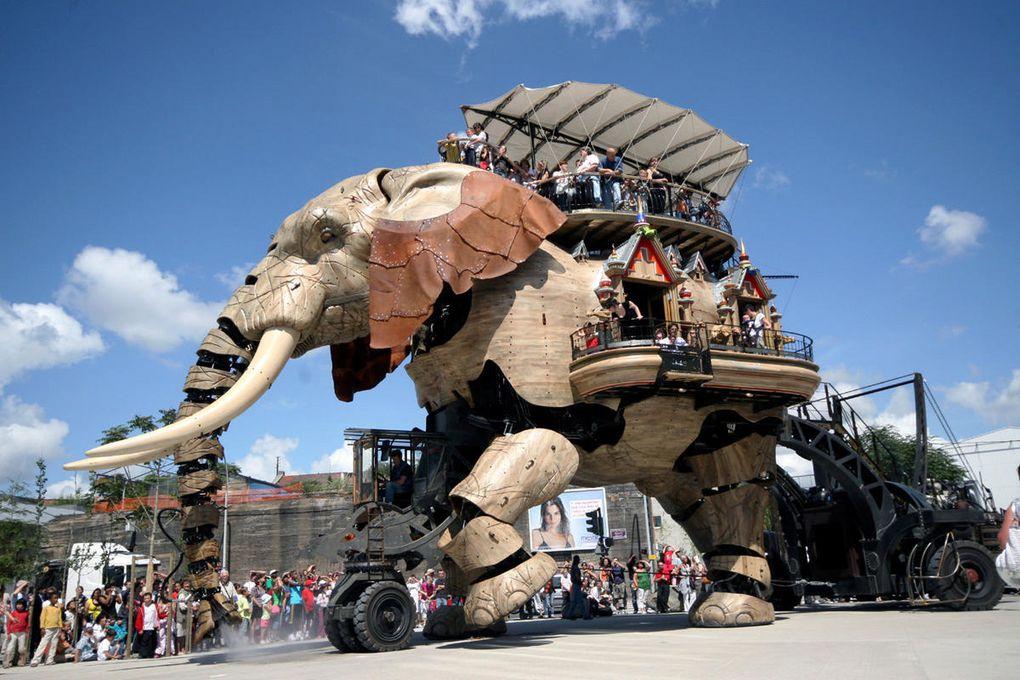 Eléphant de l'Ile de Nantes Royal de Luxe - Photos Thierry Weber Photographe La Baule Guérande
