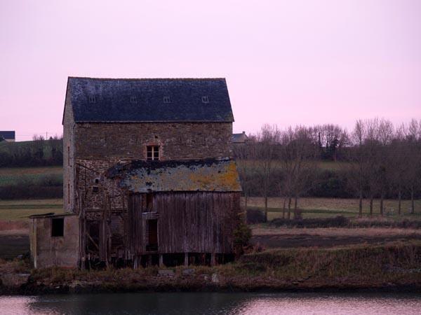 Album - Galerie Janvier 2006