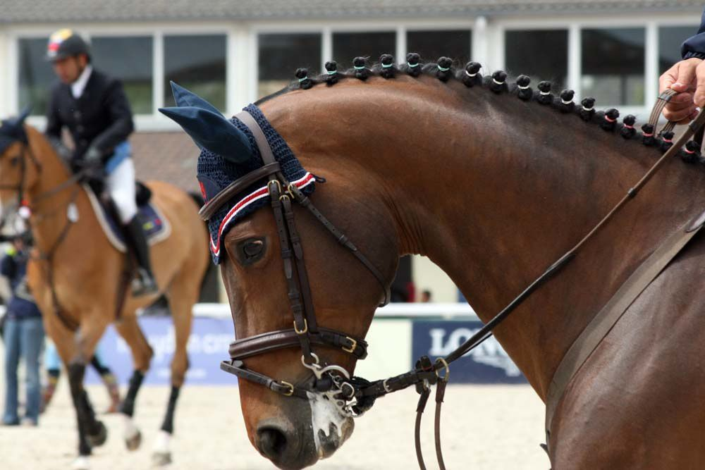 Les photos du Jumping International de France 2009 - La Baule