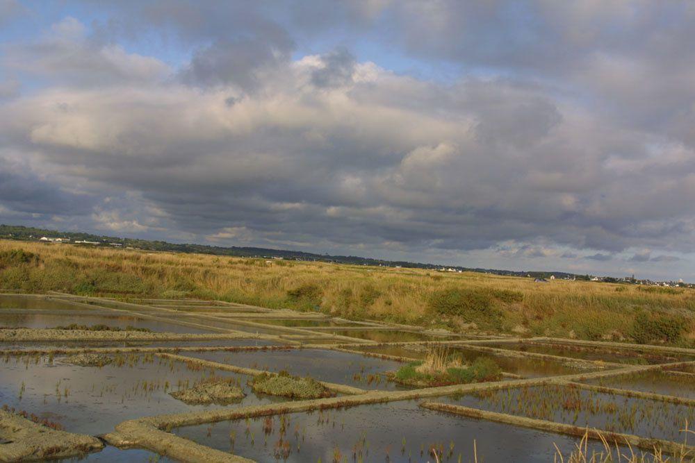 Images des marais salants de Gu&eacute&#x3B;rande&nbsp&#x3B;au lever du soleil