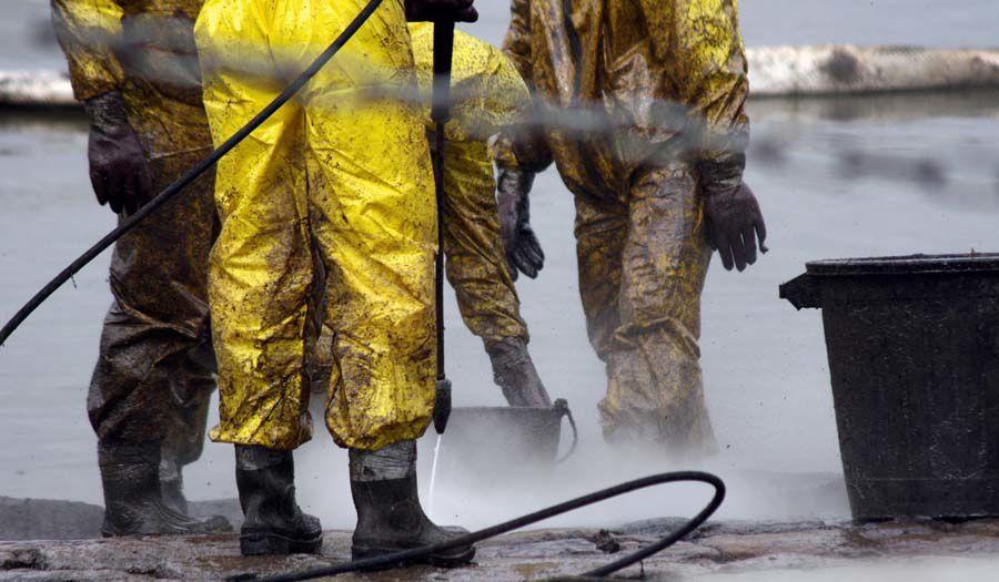 Pollution par du fioul lourd de l'estuaire de la Loire Raffinerie Total de Donges Mars 2008