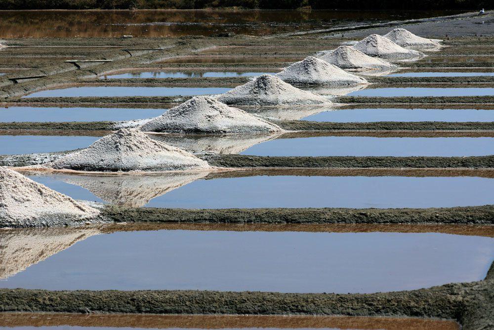 Galerie photos des marais-salants de Guérande - Photos Thierry Weber Photographe La Baule Guérande