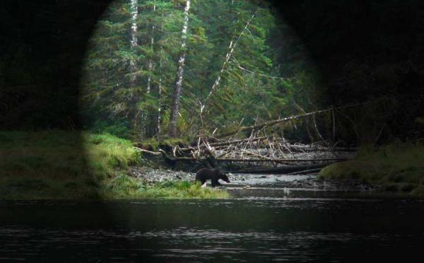 Album - Alaska