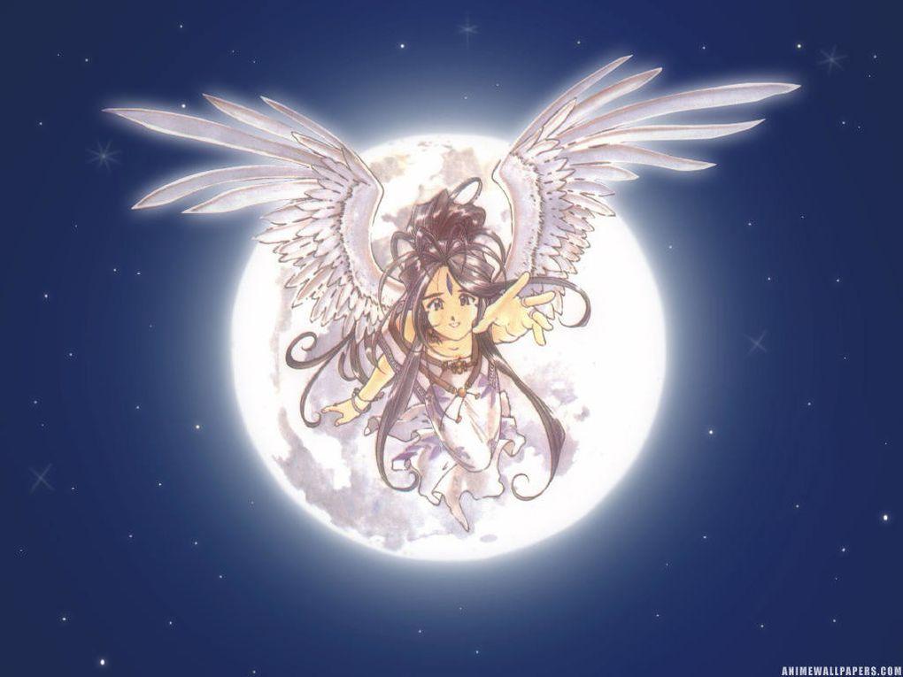 Album - Ah My Goddess