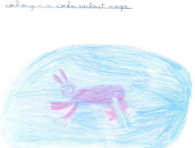 Album - 2010-animaux-ce2