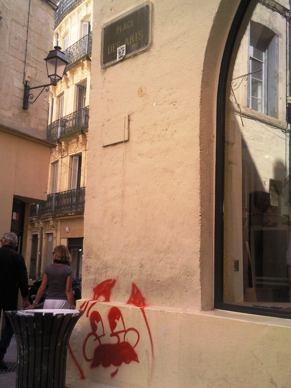 http://collectif12singes.over-blog.com/article-presentation-promotion-du-street-art-a-montpellier-75422322.html