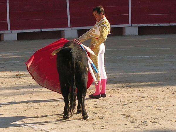 Fin du reportage photographique dans l'apr&eacute&#x3B;s midi avec les compte rendus des corridas de ce week end.