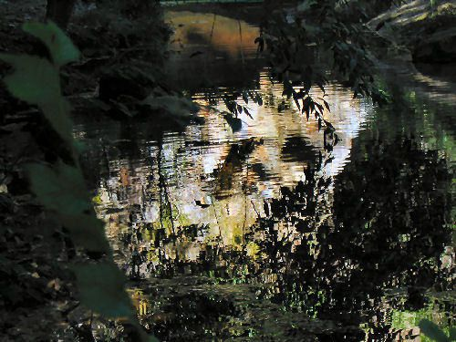 Album - source-de-la-vie