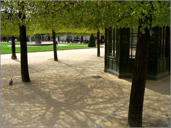 Promenade parisienne le long des quais de la Seine, et ailleurs