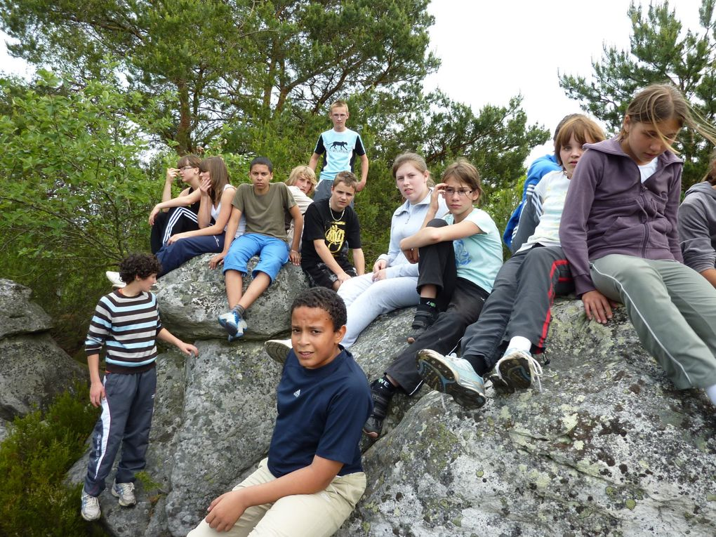 Album - Fontainebleau juin 2010
