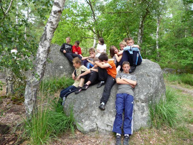 Fontainebleau-juin-2009