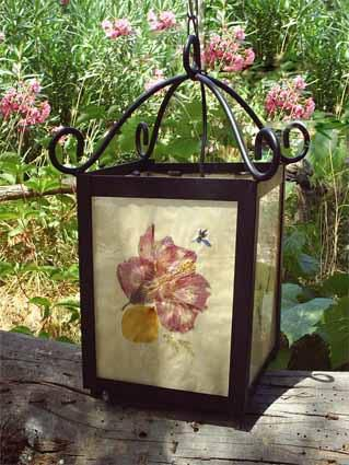 Album - En balade fleurs et Jardins