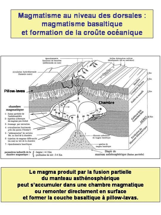 Cours roches magmatiques