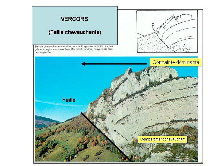 Daipo du cours de Tectonique