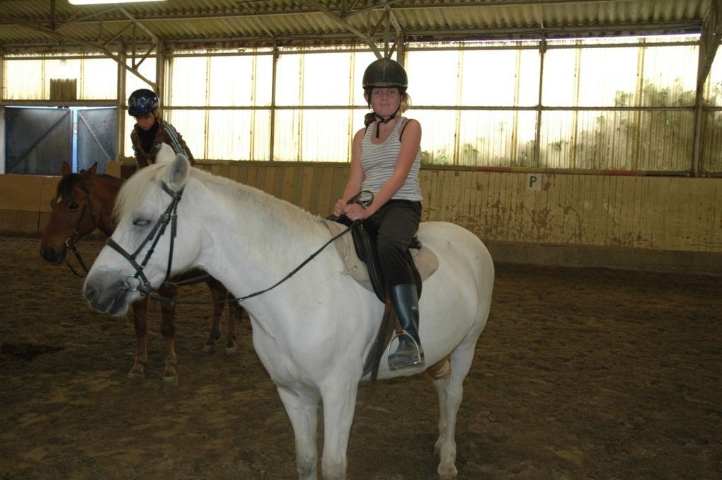 Album - 1-Equitation-2012