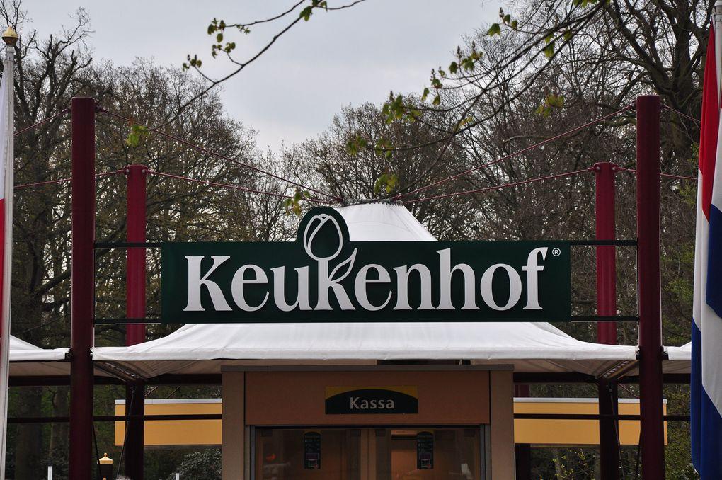 Album - Keukenhof 2012