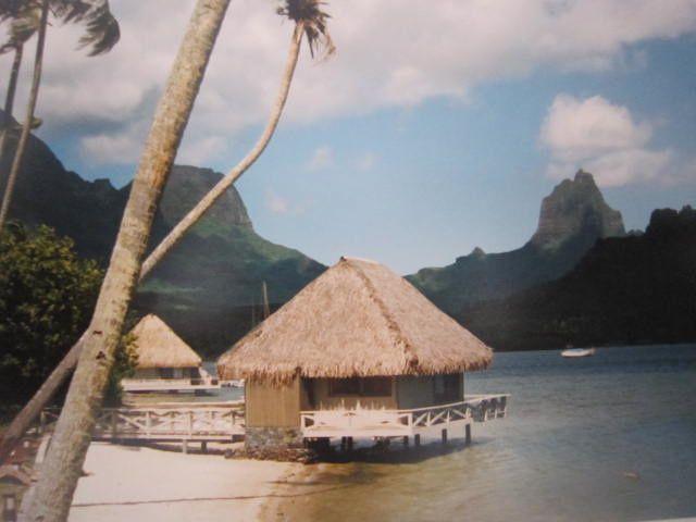 Voici des photos prises au cours de différents voyages autour du monde.