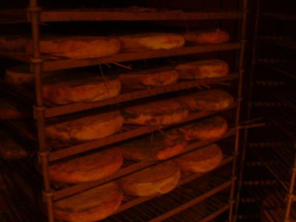 Caves d'affinages de la fromagerie