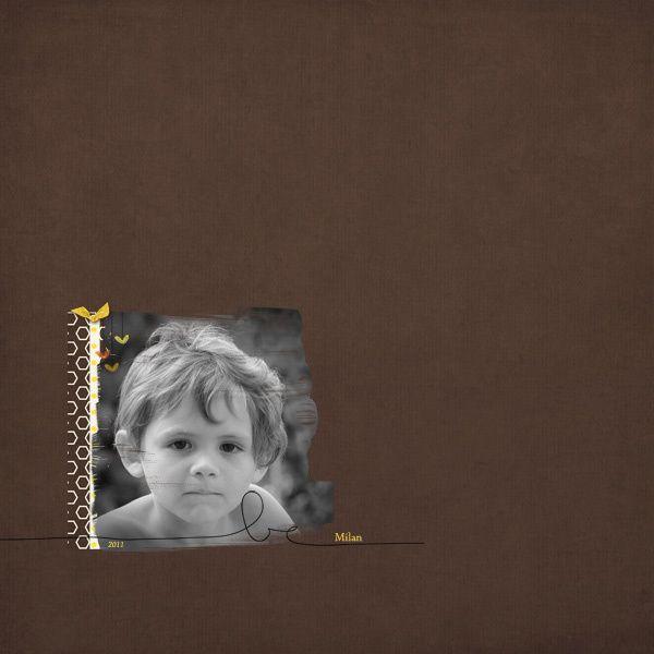 Album - digiscrap