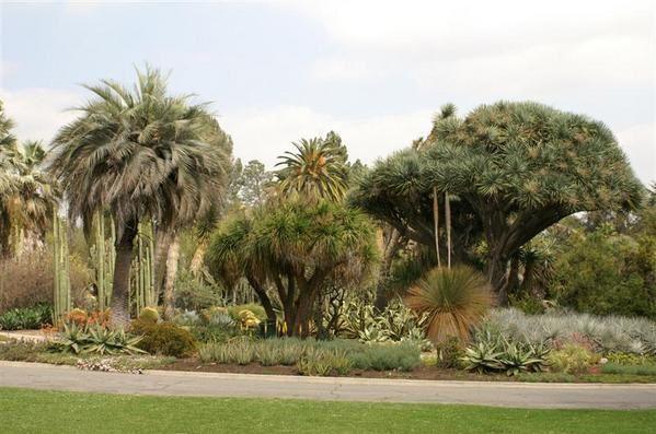L'album des jardins que nous visitons o&ugrave&#x3B; on essaie de faire des photos d'art... Enfin de fleurs !