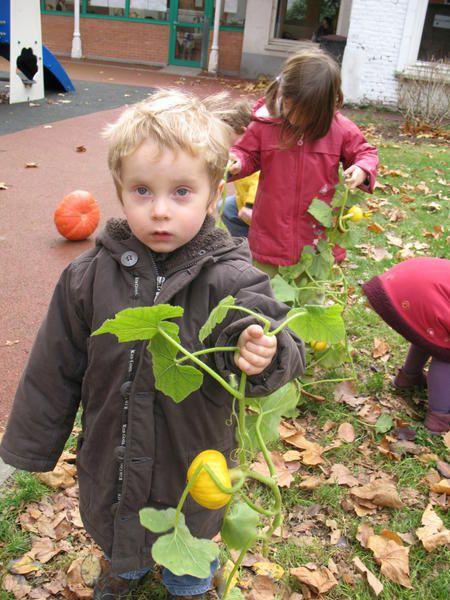 le jardin à l'automne ...avec la classe de petits