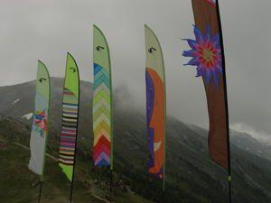 <p>1998 : l'année au cours de laquelle j'ai construit mes deux premiers cerfs-volants : le Snowflake et Dragange.</p><p>1999 : je me suisplus déplacée sur de grands festivals et j'ai commencé à créer, vraiment...<p>
