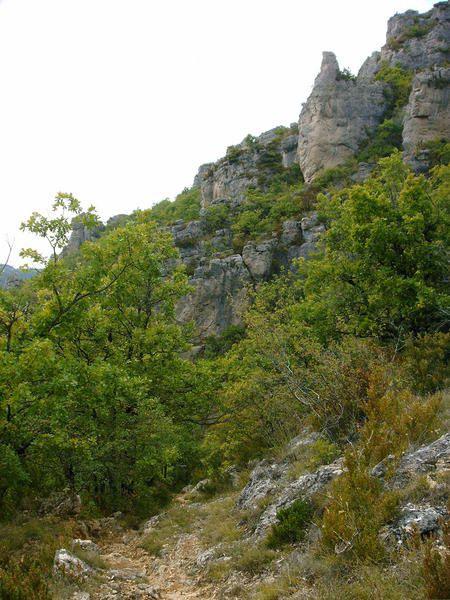 Une sortie sur le plateau de Larzac et le Causse Nègre... Plein les yeux
